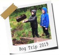 Click here to see photos from our trip to the bog